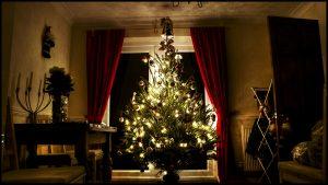 Zero Waste Christmas tree