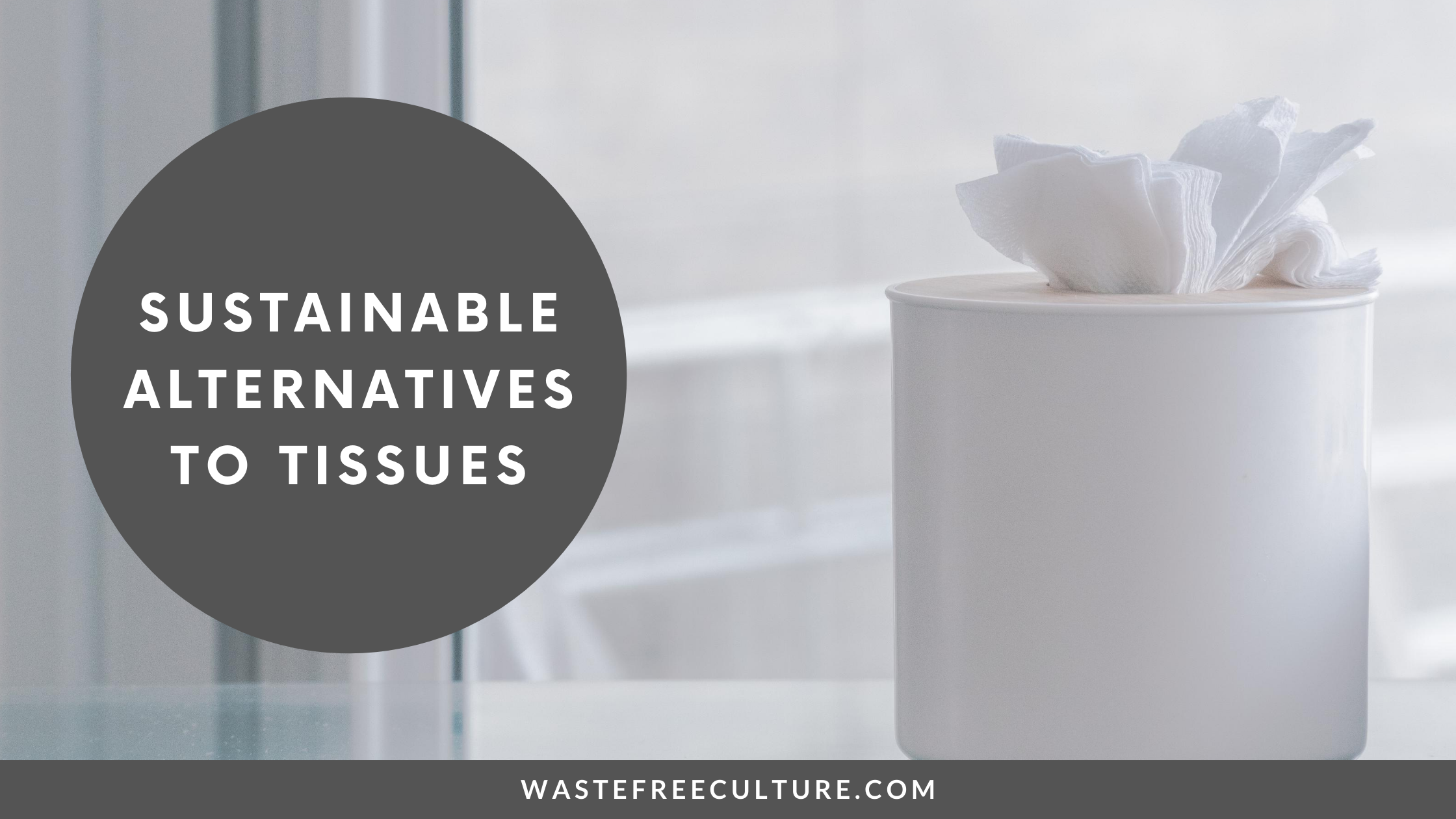 Sustainable Alternatives to Tissues